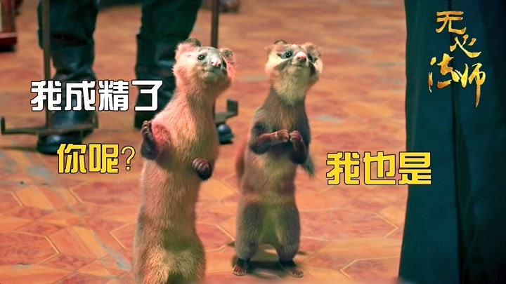 陳大光賭場出怪事,無心法師出手相助,竟是黃鼠狼成精!